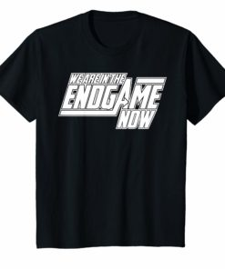 We Are In The Endgame Now Superhero Themed T-Shirt