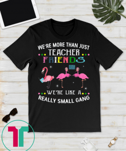 We're more than just teacher friends Tee Shirt